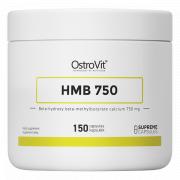 Антикатаболическая добавка OstroVit - HMB 750