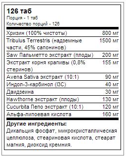 33313587testostroUN.png
