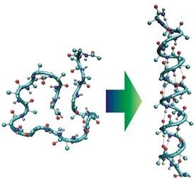 Переход от первичной к вторичной структуре белка